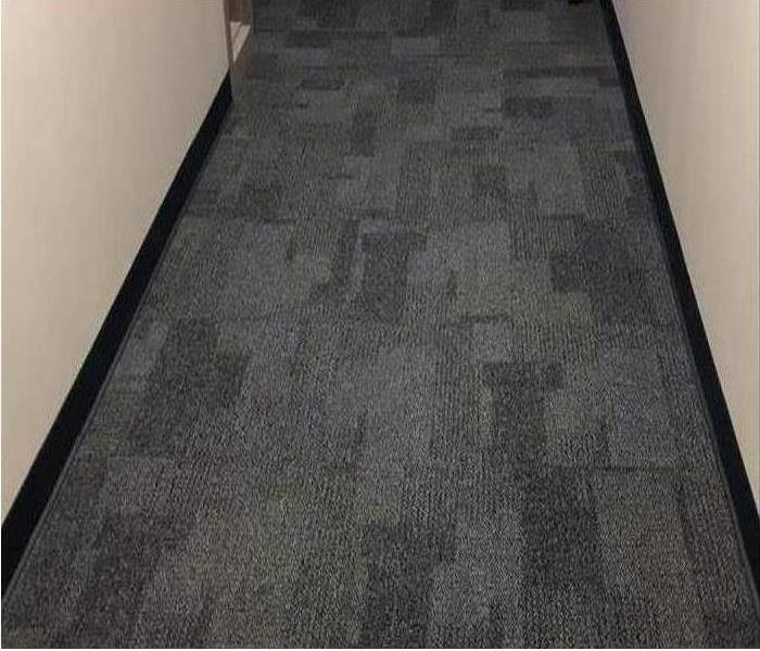 clean and dry carpet in hallway